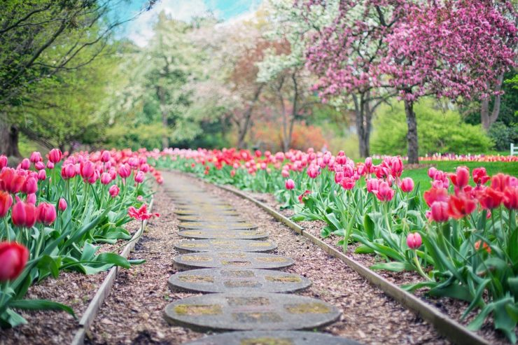 Quels matériaux choisir pour une bordure de jardin ?